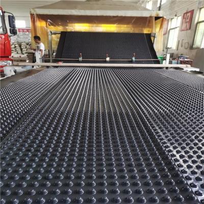 胶东HDPE塑料排水板、